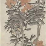上海博物馆藏虚谷《枇杷图》轴