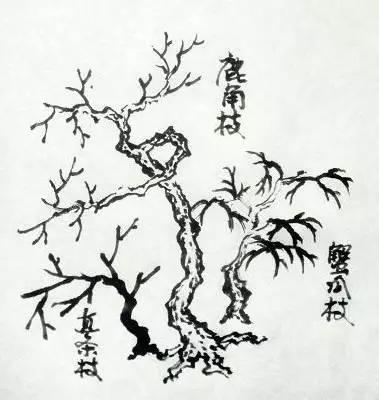 国画中,树木画法分类